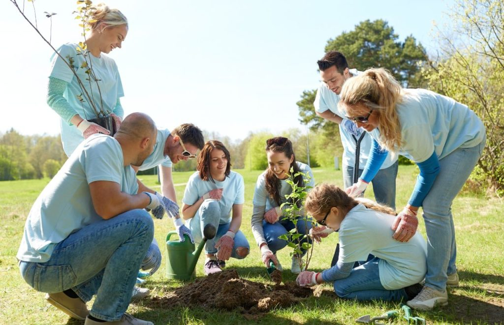 YMCA Tax Exemption with community planting flowers